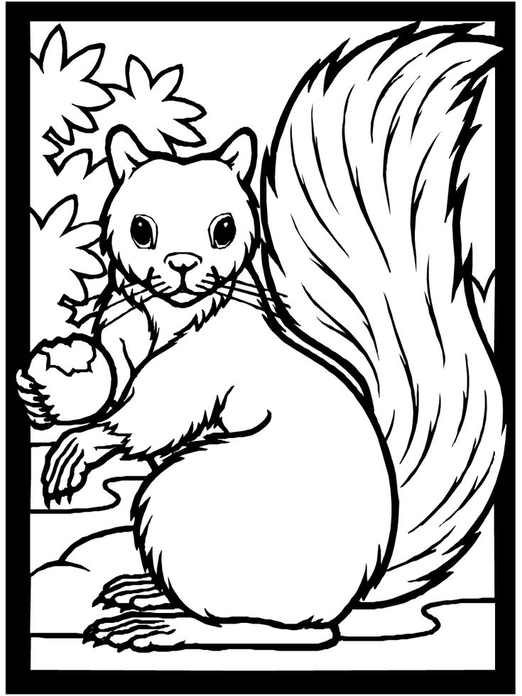 97 best images about coloring pages on pinterest