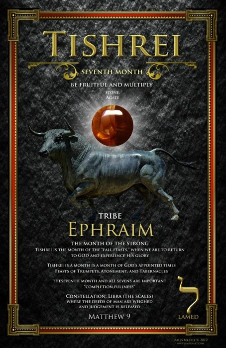 Seventh Biblical Month of Tishrei, Be Fruitful and Multiply, The Tribe of Ephraim, Stone: Agate