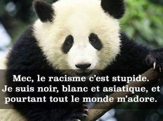 25+ beste ideeën over Citation Contre Le Racisme op ...
