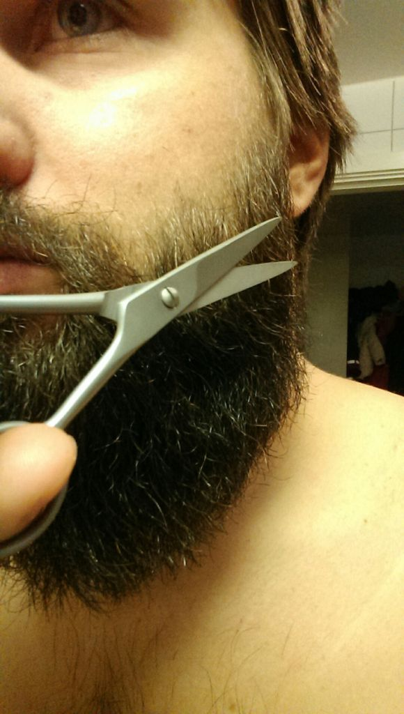 Putsa skägget | Testpiloterna  Dr Dittmar Professional Moustache Scissor
