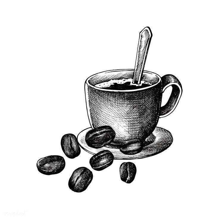 Download premium vector of hand drawm coffee and coffee