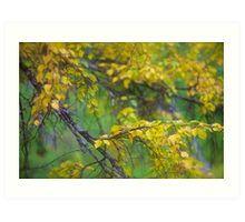 Dreamy Photo . 7 ★★★★★ .  ####  Painting by   autumn  ####.  Norway. 2011. « Arrête-toi, tu es si b»  . Views: 3674 . Featured Avant - Garde Art. Art Print