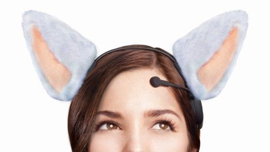 36 Best In The News Images On Pinterest Cat Ears