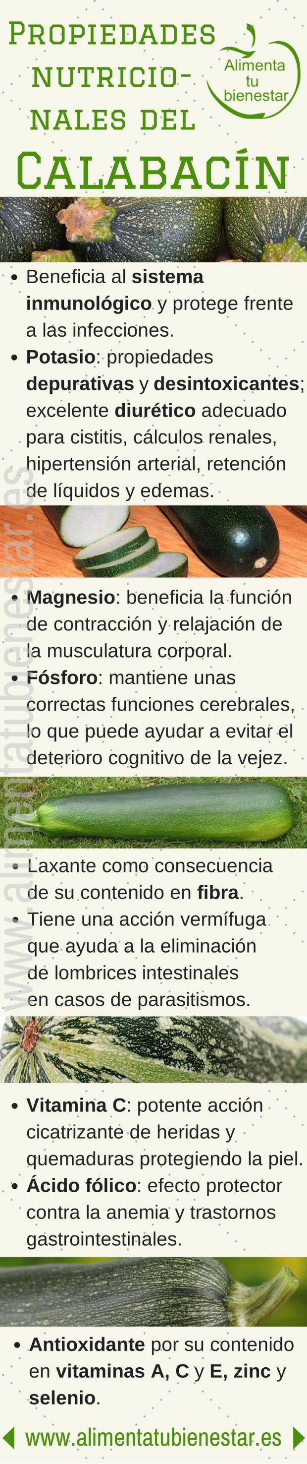 Verduras antioxidantes: el calabacín