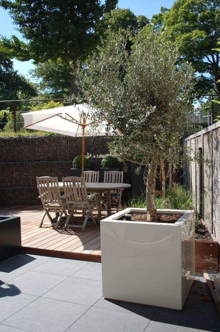 Witte hoogglans bak met olijfboom op een keramiek tegel terras www.biesot.nl
