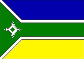 AMAPA BRASILE  BANDIERA   Territorio de Amapá , 1984-1988 - Estado deAmapá , dal 1988