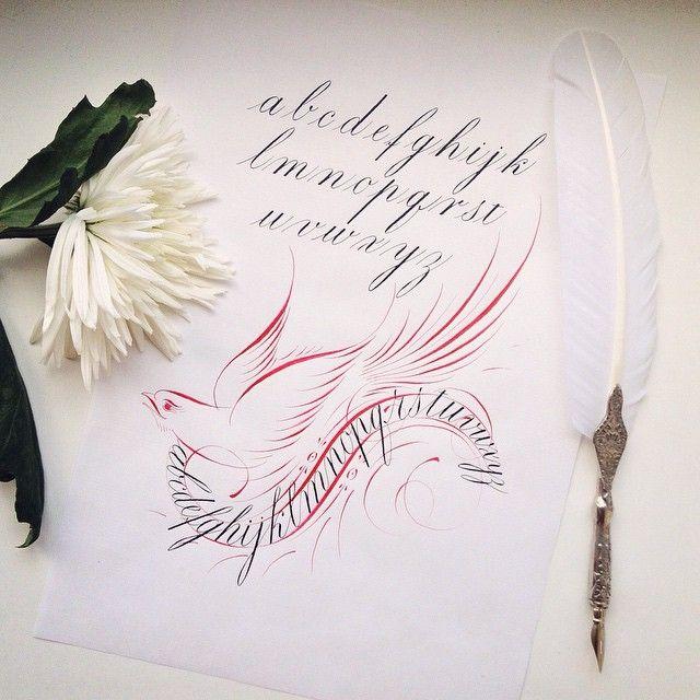 163 отметок «Нравится», 31 комментариев — Irina Lebedeva (@veverka83) в Instagram: «Моя первая птичка! Всегда мечтала нарисовать такую!  My first bird!  #VSCOcam #calligraphy #bird…»