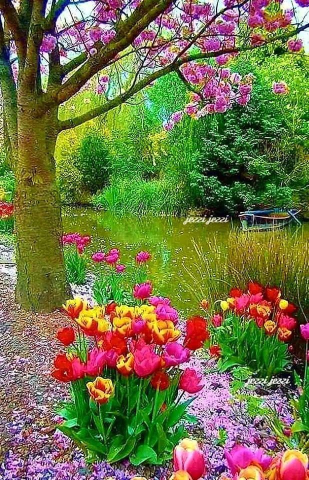 It S Very Beautiful I Will Never Ever Have Enough So Much Beauty That Make Me Feel How Fortunate I A Beautiful Landscapes Beautiful Nature Beautiful Gardens