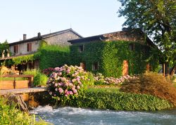 La Finestra sul Fiume | Italy Verona Veneto. Dreamy, divine and close to Borghetto, a romantic escape for nature lovers, golfers, city folk… with swans, geese, herons and frog chorus