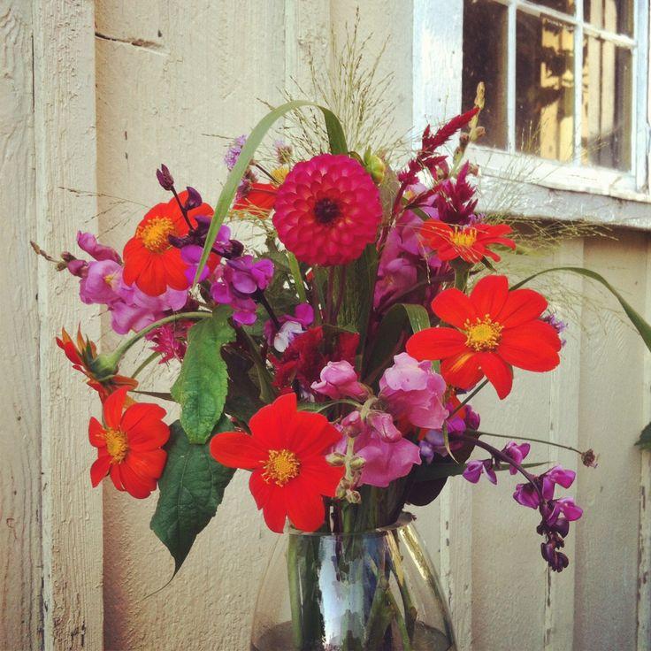 September Wedding Flowers In Season: 60 Best September Flowers Images On Pinterest
