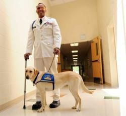 Canine Companions for Independence recognizes an injured war hero, changing his life with the gift of a new best friend.