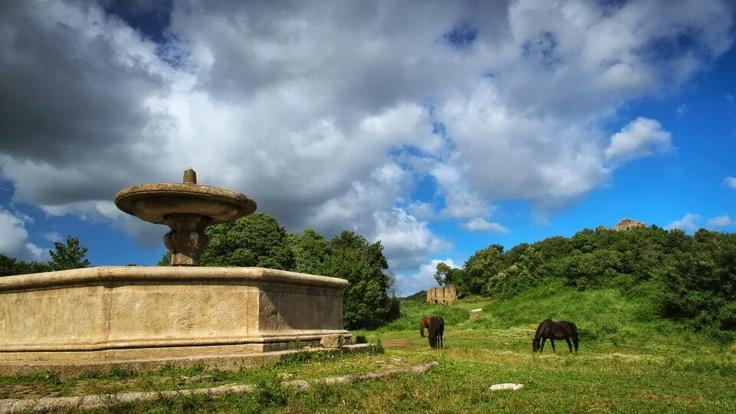 Fontana ottagonale, Monterano, Italy. Photo by Piero Persello #fountain #horse #italy #countryside  more info: http://it.wikipedia.org/wiki/Monterano