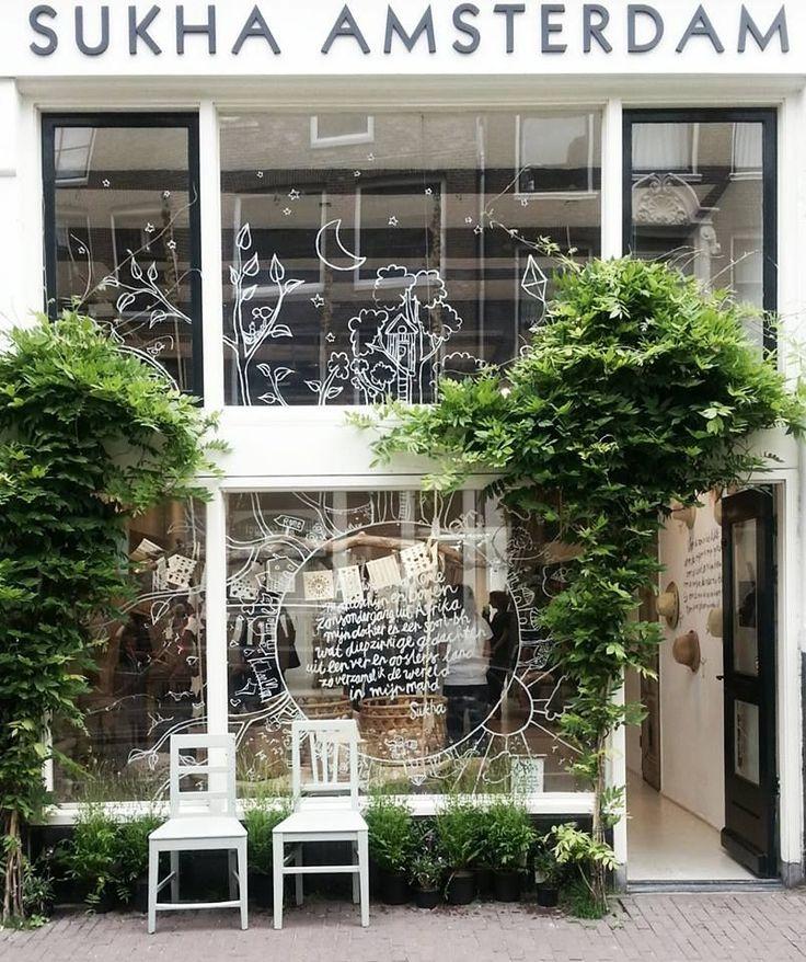 plantes devant une vitrine (glycine ?)