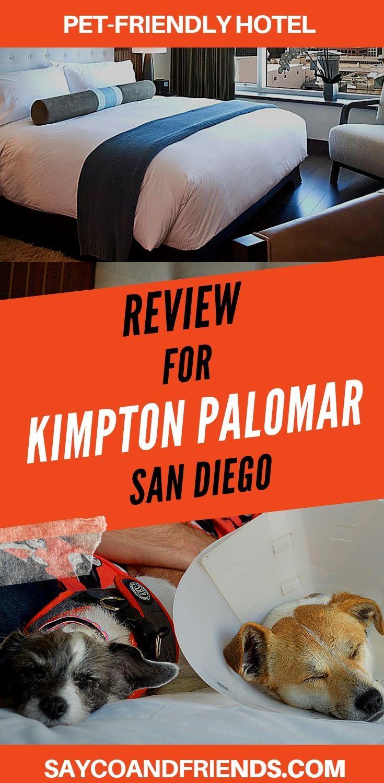 Review For Kimpton Palomar Hotel In San Deigo Saycoandfriends Dog Friendly Hotels Dog Friendly Beach Dog Friends