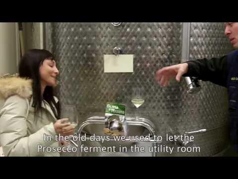 Prosecco dalla vigna alla bottiglia
