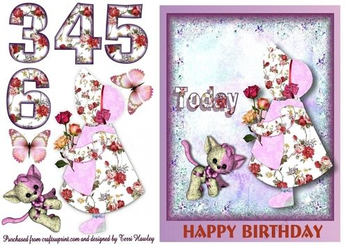 This is a cute 3D  birthday card for a little girl aged 3 - 6. Has  little holly hobby type little girl and a cute little teddy type toy. There is big numbers for the 3 4 5 and 6 and little butterflies for you to use anywhere you like, very easy to make ans any little girl would love it.