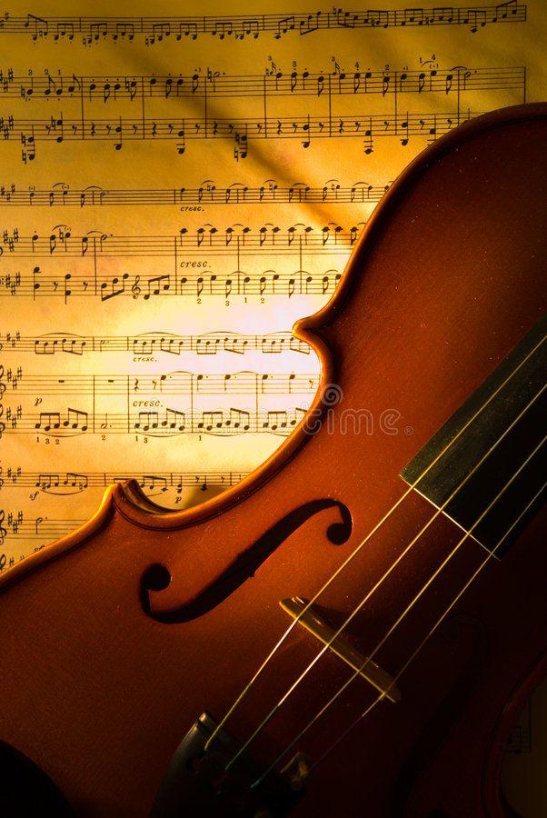 28+ Microscopic violin ideas