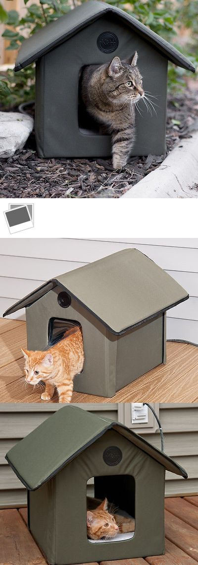 Permanent Heated Cat House