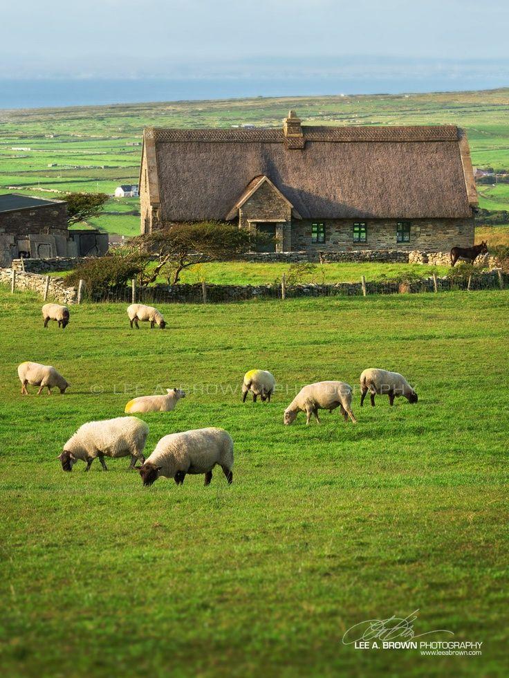 378 Best Irish Cottages Images On Pinterest Irish