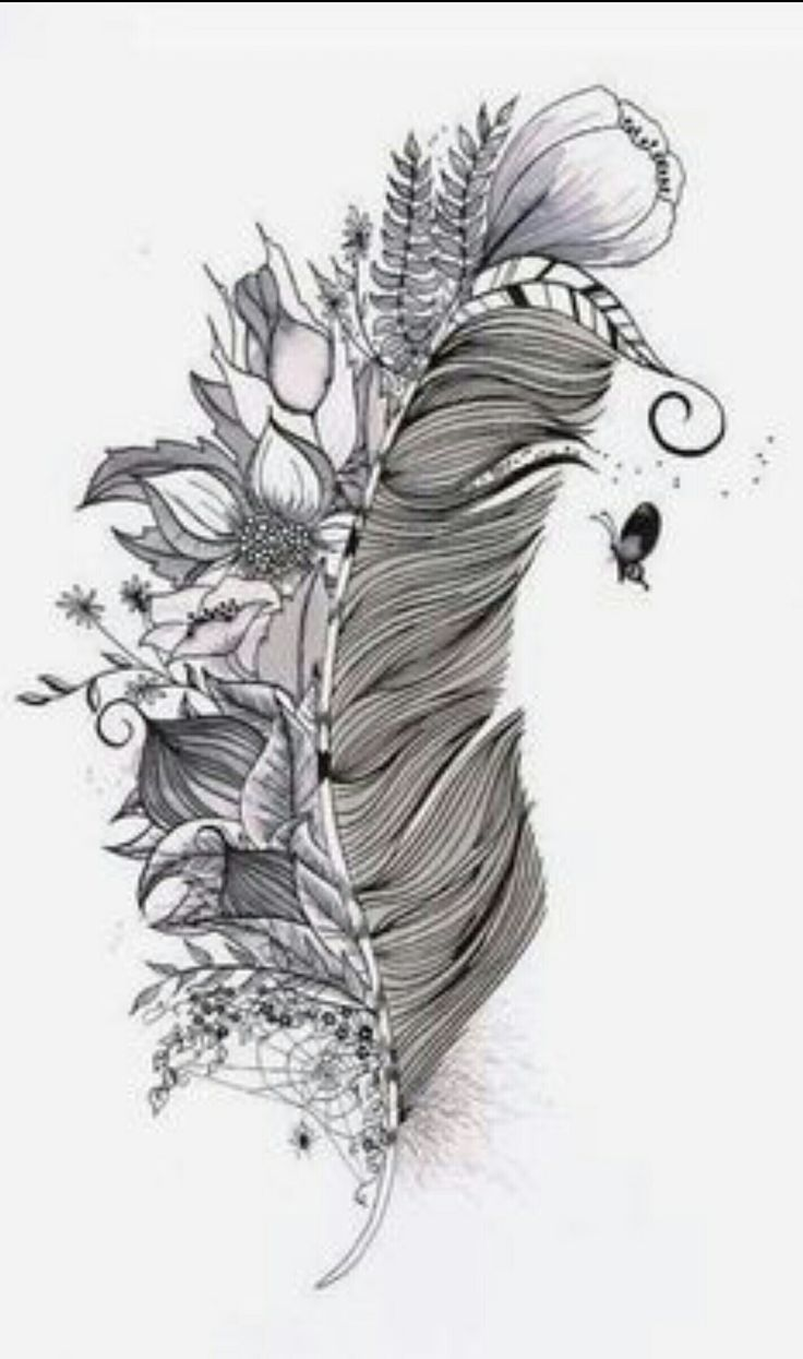 Plume d indien dessin galerie tatouage - Tatouage indien signification ...