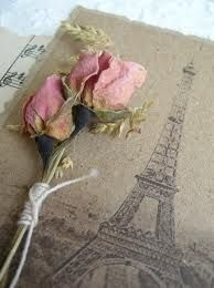 eiffel tower and dried pink roses- this is so appealing to me that I will try to frame it for my pink room