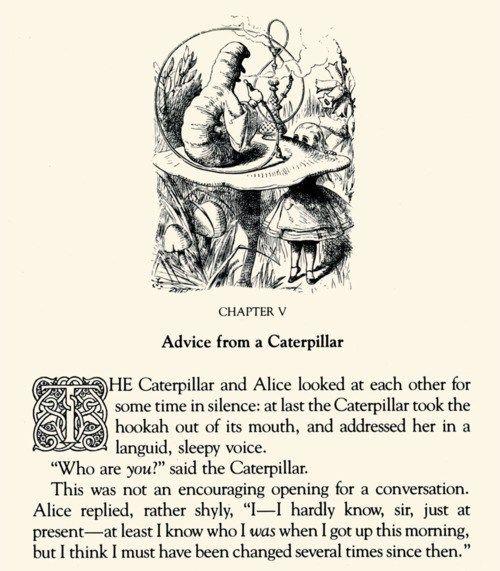 Alice In Wonderland Caterpillar Quotes: 71 Best Go Ask Alice Images On Pinterest