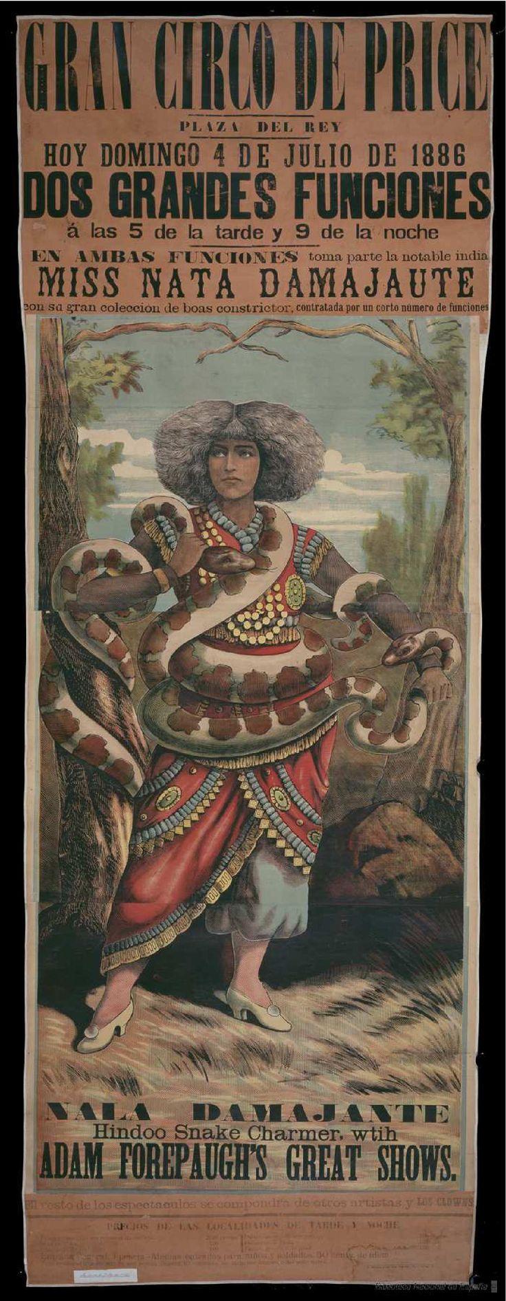 Miss Nata Damajaute. Circo Price — Dibujos, grabados y fotografías — 1886
