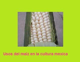 Juan Antonio Ramirez pianista: Usos del maíz en la cultura mexica   - En la prepa...