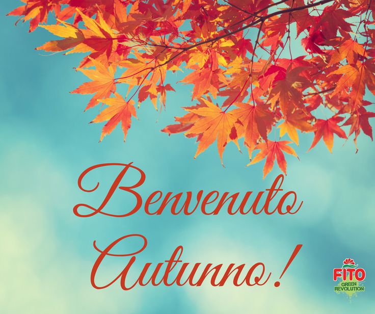 Welcome autumn! Benvenuto autunno #autunno #fall #autumn #welcome #stagione #benvenuto #season #lightblue #azzurro #orange #arancio #yellow #giallo #red #rosso #warmcolors #coloricaldi