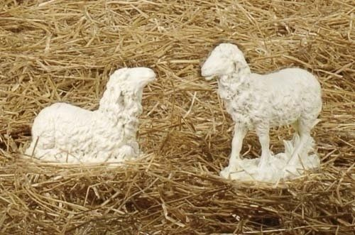 "Set of 2 Joseph's Studio Sheep Outdoor Christmas Nativity Statues 9.75 by Roman. $60.00. From the Joseph's Studio 27"" Nativity CollectionItem #39543People living in the Holy Land treasured their flocks. During biblical times, Sheep were greatly needed by man as a source of food and because of their wool, for warm clothing. They also served as a gauge in determining one's wealth.For indoor/outdoor useActual dimensions of standing sheep: 9.75""H x 10""L x 4""WActual dim..."