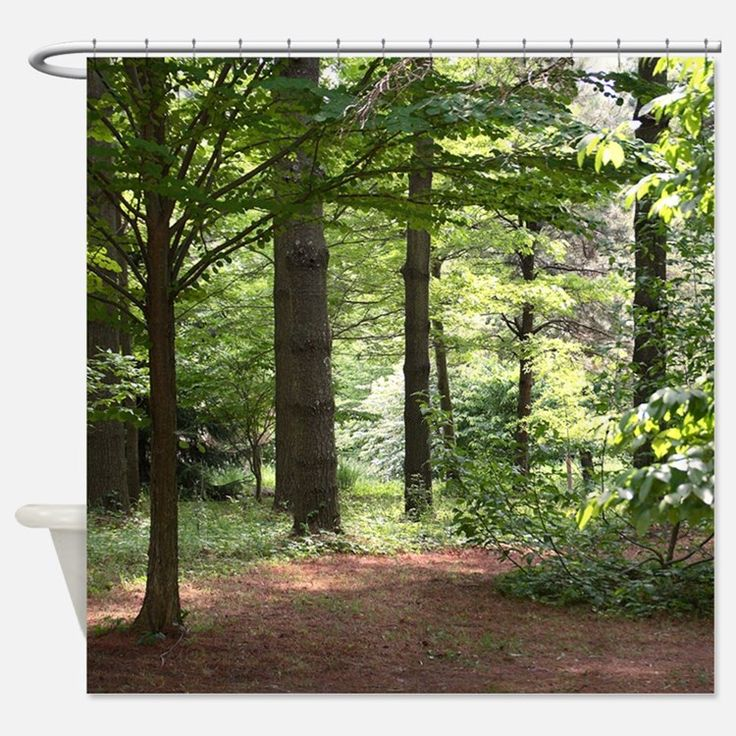 Walk In The Woods Shower Curtain For