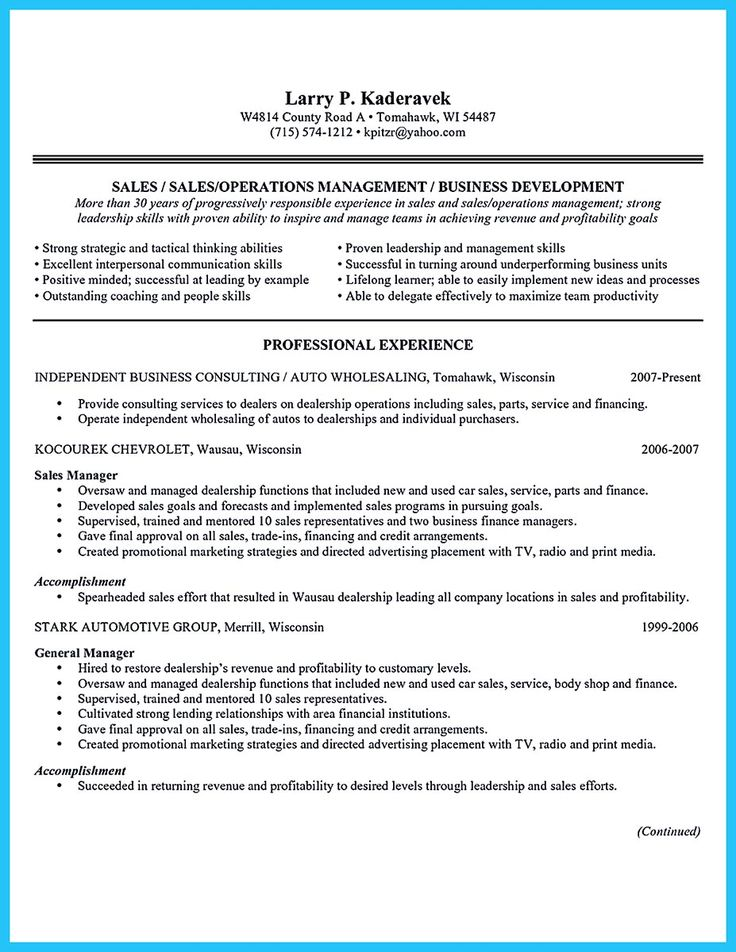 Resume Sales Marketing Objective Resume Resource  Sales Marketing Resume