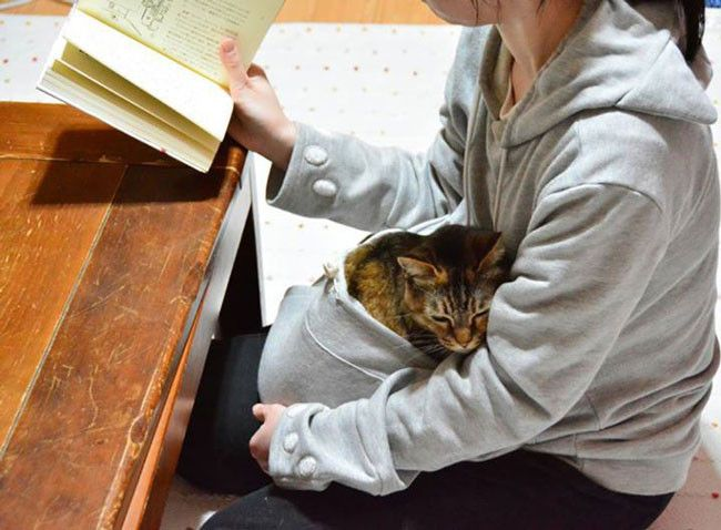 Now you can bring your cat along wherever you go, without having to carry a leash or a cardboard box. Japanese company 'Unihabitat' has created a hoodie that comes with a clever cat transportation feature: a pouch similar to that of a kangaroo's. Called the 'Mewgaroo', the hoodie comes with a pouch that's big enough […]