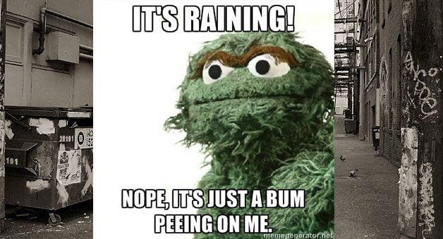 104 Best Muppet Wisdom Images On Pinterest