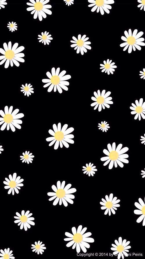 25+ melhores ideias de Papel de parede de girassol no Pinterest | Girassóis, Flora e Citações de ...