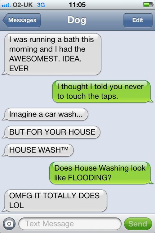 Texts From Dog: Funny Texts,  Internet Site,  Website, Web Site, Dog Texts, Giggles, Funny Stuff, Dogs Texts, Houses Wash