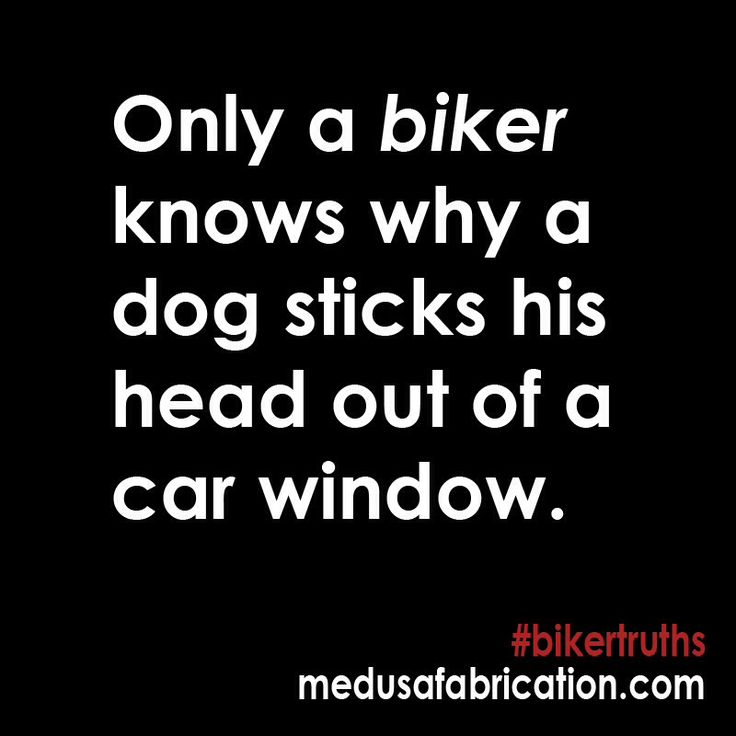 Harley Davidson Love Quotes Glamorous 58 Best Motorcycles Images On Pinterest  Motorcycle Quotes Biker
