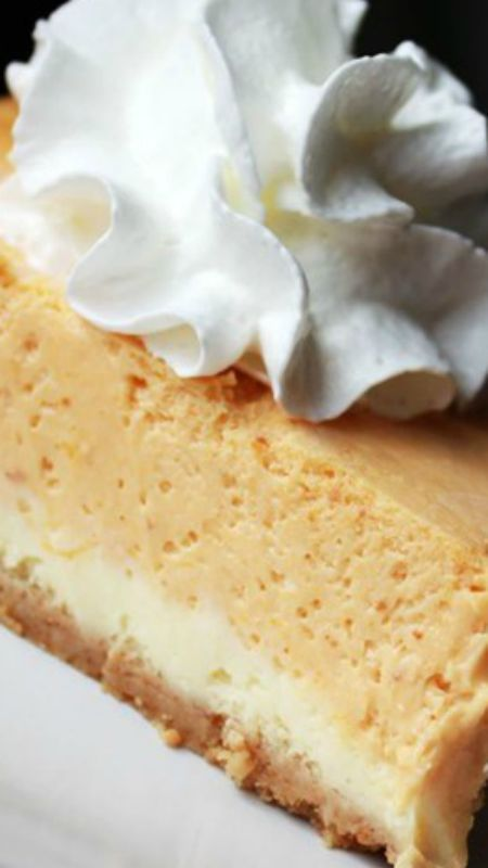 Double Layer Pumpkin Cheesecake ~ A great alternative to pumpkin pie, especially for those cheesecake fans out there.