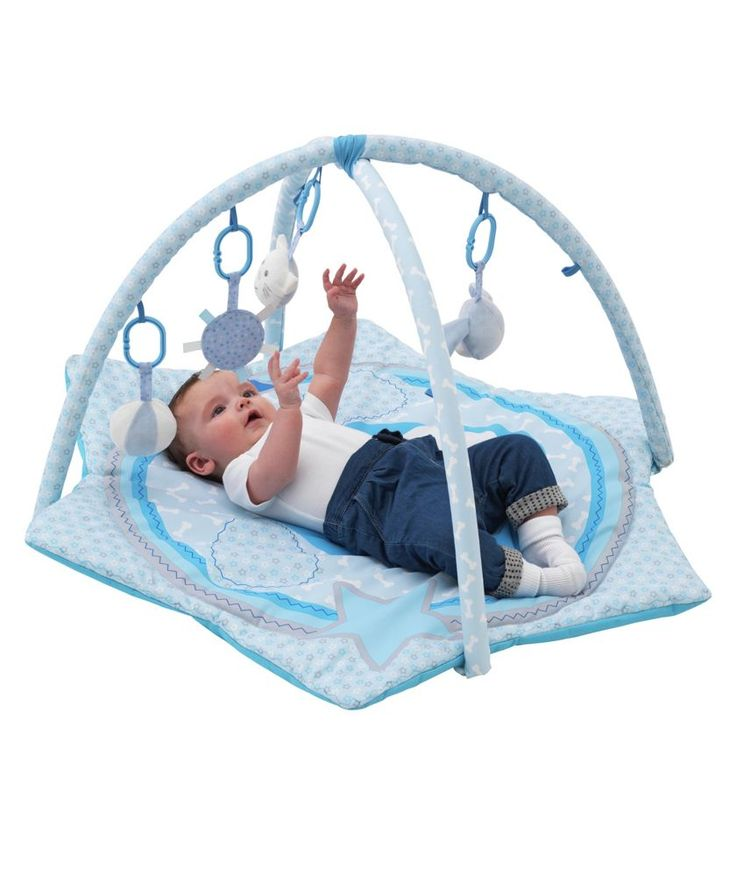 Buy Chad Valley Baby Deluxe Play Gym Blue Puppy at Argos.co.uk - Your Online Shop for Playmats and gyms.