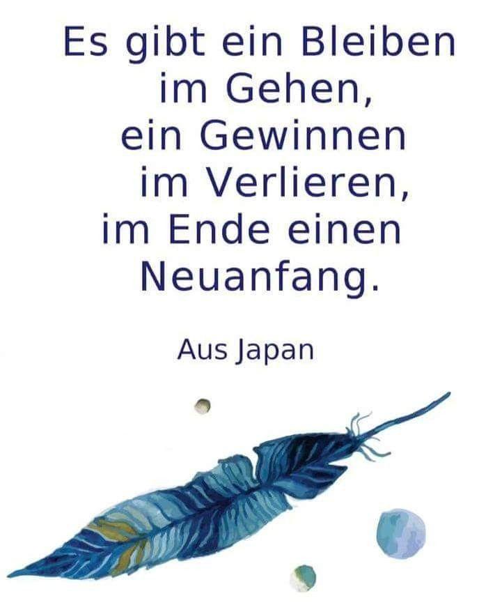 Zitate Leben Weisheit Liebe Leben Weisheit Leben Tipps Philosophie   – Life Quot…