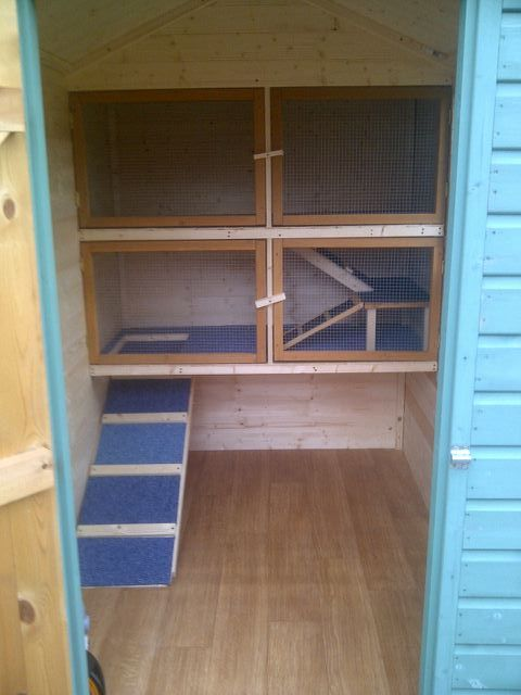 Turning your garden shed into a home for your rabbits