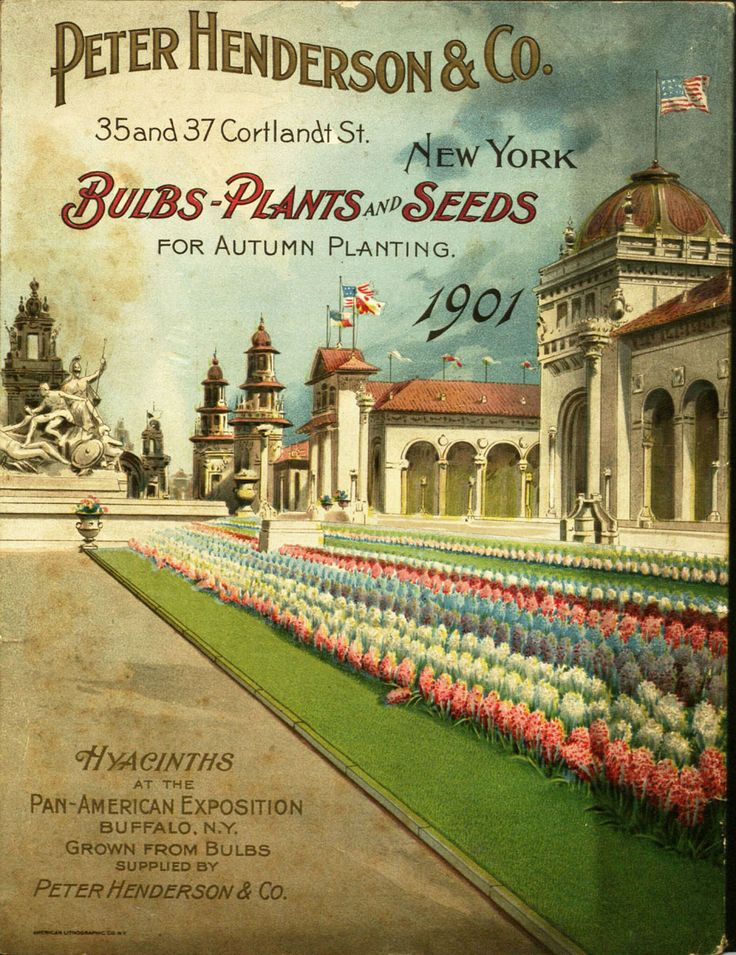 From the collection at Andersen Horticultural Library. Seed catalogs and related publications often tout honors won by that nursey at world's fairs and other horticultural exhibitions. The cover of Peter Henderson & Co.'s 1901 seed catalog depicts Henderson hyacinths grown on the grounds of the 1901 Pan-American Exposition in Buffalo, NY.