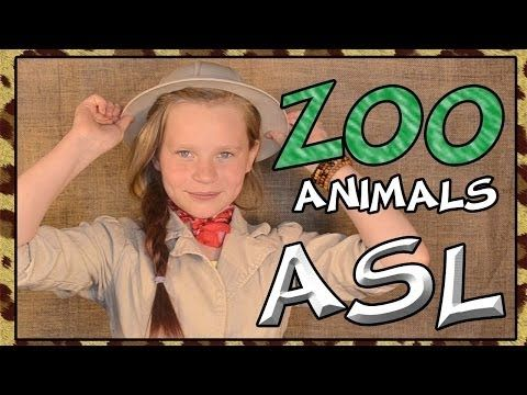 Learn Zoo Animals | American Sign Language - YouTube