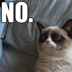 grumpy cat memes | 10-of-the-best-grumpy-cat-memes