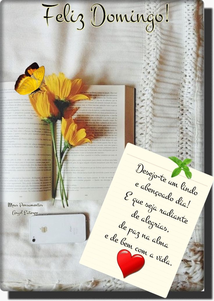 Feliz Domingo!______ Desejo-te um lindo e abençoado dia! E que seja radiante de alegrias, de paz na alma e de bem com a vida. Domingo é um ótimo dia ... - _♥○○Meus Pensamentos○○♥_ - Google+