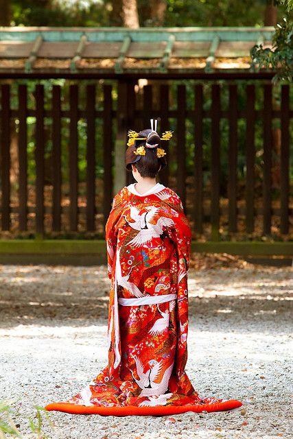 明治神宮の花嫁 Japanese Shinto bride (Hayanome) in Meiji Jingu, Tokyo, Japan