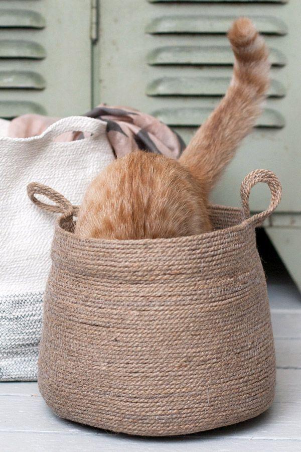 target cat carrier
