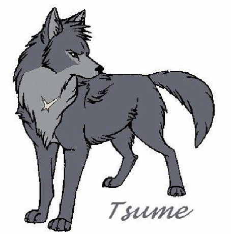 Wolf's Raines Fanfiction :D - Képgaléria - Wolf's Rain - tsume ...