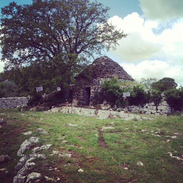 Il #trullo più antico di #Puglia è in #valleditria, noi l'abbiamo scoperto con le #invasionidigitali.  La storia che ha da raccontare è lunga più di 500 anni! #invadiAmoTrulloMarziolla
