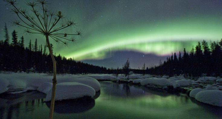 Northern Lights display, Yukon Canada